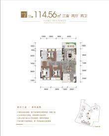 住宅114.56㎡户型